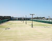県営テニスコート